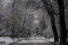 parque san francisco  febrero 2015