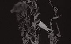 'littlefishlittlefish'  'FischchenFischchen' Karen, Celestial, Photography, Painting, Outdoor, Collection, Fish, Outdoors, Painting Art