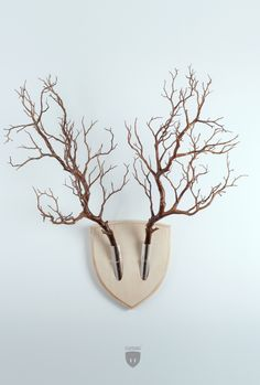 Cette série de supports muraux pour des fleurs et des plantes qui les font ressembler à des trophées de chasse végétariens s'intitule « Elkebana ».