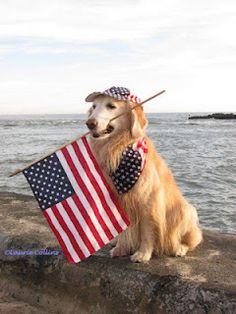 Golden Patriot