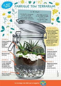 Closed Terrarium Plants, Terrariums Diy, Plants In Jars, Cactus Terrarium, Mini Terrarium, How To Make Terrariums, Garden Terrarium, Succulents Diy, Planting Succulents