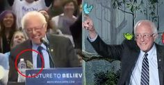 A Bird Flew Onto Bernie Sanders' Podium and It's the Most Delightful Thing Ever
