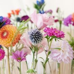 Beautiful mixed flower centerpiece.