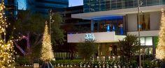 RDG Bar Annie   Best Restaurant in Houston   Best Steakhouse in Houston