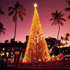 Christmas in Hawaii, enjoying the decorations around Honolulu #Aqua12staysofchristmas
