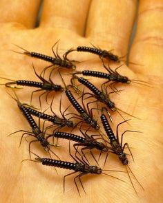 Stonefly #12 #flytying #flyfishing #perhokalastus #perhonsidonta #korri #stonefly #stoneflynymph
