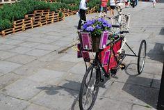 Bath Bike