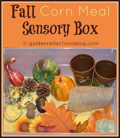 Fall Corn Meal Sensory Box for Preschoolers | goldenreflectionsblog.com #preschool #sensorybins #specialneeds