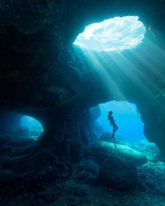 travisburkephotography: Being inside a cave underwater on a single breath of air both terrifies and exhilarates me. Here is showing how calm and… Underwater Caves, Underwater Photos, Underwater Photography, Nature Photography, Night Photography, Landscape Photography, Under The Water, Under The Sea, Ocean Art