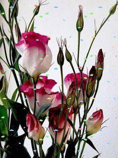 #GIF #FLOWERS RUMA♥ZIHOZAYO