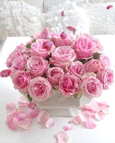 💕rose gif~💕 – World of Flowers Faux Flowers, Pretty Flowers, Pink Flowers, Amazing Flowers, Peonies And Hydrangeas, Pink Peonies, Peonies Garden, Gif Rose, Beautiful Flower Arrangements