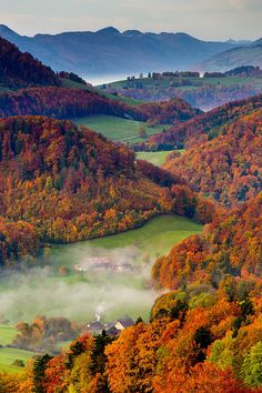 Colors to remember - Autumn - Basel - Switzerland - by Jan Geerk