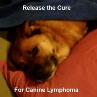 Eli Lilly and Company: Cure Canine Lymphoma: Release Canine Rituximab