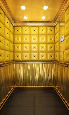 """""""Bling Bling"""" Homelift ThyssenKrupp Encasa, with Gold & Leather ! Modele """"Opulent"""" (France)"""