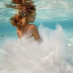Underwater photography - elena kalis