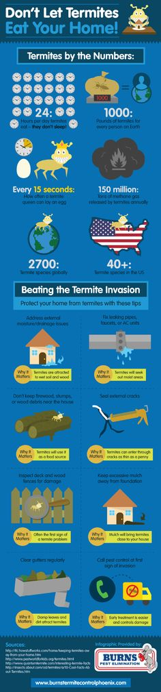 Don't Let Termites Eat Your Home #Infographic