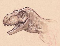 T-Rex head study by StephaneRoux on deviantART
