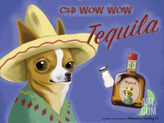 Chihuahua Tequila Label Dog Art MagnetThis is a magnet from my original art work. The magnets are x with a full magnetic back. Strong and high quality. Chihuahua Art, Chihuahua Quotes, Chihuahua Rescue, Tequila, Framed Wall Art, Framed Art Prints, Dachshund, Dog Poster, Print Poster