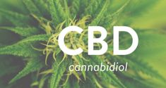 (Updated 10/10/17) Miracle CBD Oil… annabis is becoming well-known for a cannabinoid it produces called CBD (Cannabidiol).CBD is an all-natural and legal cannabis-based health supplement tha…