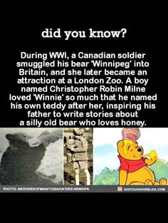 History of Pooh, whoo knew Interesting Fact Wow Facts, Wtf Fun Facts, Random Facts, The More You Know, Did You Know, Funny Memes, Jokes, Interesting History, Interesting Facts