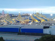 Cirque Du Soleil - Ovo: an absolutely AMAZING show!