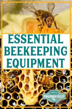 If you are new to keeping bees, don't go … Essential Beekeeping Equipment Basics. If you are new to keeping bees, don't go crazy buying beekeeping equipment that you don't need! Here are the essentials. Beekeeping For Beginners, Gardening For Beginners, Honey Bee Pollen, Honey Bees, Beekeeping Equipment, Raising Bees, Backyard Beekeeping, Bee Friendly, Worm Farm