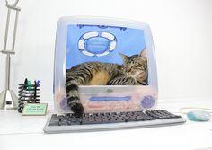 riciclo schermo computer 12