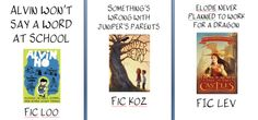 Book Hooks...like shelf talkers, but shorter!
