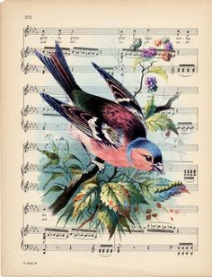 Notes. Pictures. Vintage. Decoupage Vintage, Decoupage Paper, Vintage Paper, Vintage Art, Vintage Birds, Vintage Postcards, Vintage Prints, Bluebird Vintage, Sheet Music Crafts