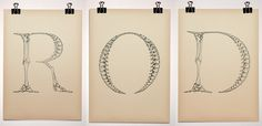 """This is Bjorn Johansson's Anatomy of a Typeface ~ """"Triptych made for a gallery exhibition in 2005. The work is playing with the word """"anatomy"""" which in typographic terms is referring to the different parts of a character. Brilliant!"""