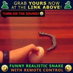 Entertainment Discover Remote Control Funny Joke Snake Toy - Tutto per l& orale Very Funny Jokes Funny Jokes To Tell Stupid Funny Hilarious Funny Prank Videos Good Pranks Funny Pranks Evil Pranks Harmless Pranks Funny Shit, Really Funny Joke, Clean Funny Jokes, Latest Funny Jokes, Extremely Funny Jokes, Short Jokes Funny, Funny Jokes In Hindi, Some Funny Jokes, Funny Jokes To Tell