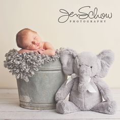 Elephant theme for Danae http://newborn-baby-care.us