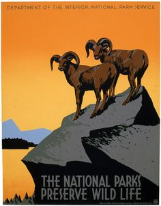 """A WPA Federal Art Project poster for the National Park Service promoting travel to National Parks. The poster shows two bighorn sheep and reads, """"The National Parks Preserve Wild Life."""" Illustrated by J. Hirt, c. 1939."""