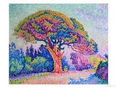 The Pine Tree at St. Tropez, 1909 Giclee Print by Paul Signac at Art.com