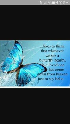 The day my mom passed a butterfly landed on me. Stayed on me into my car. I do believe this!!