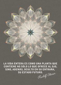... La vida entera es como una planta que contiene no sólo lo que ofrece al ojo, sino, además, oculto en su entraña, su estado futuro. Rudolf Steiner.