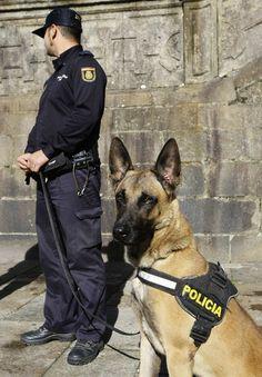 Guias Caninos C.N.P.