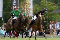 Polo sport | Horses | riding | Netherlands | Europe