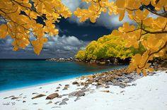 Lengkuas Island in infrared, Bangka Belitung, Indonesia.  (by Iwan Haimin)