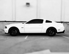 New Mustang 5.0