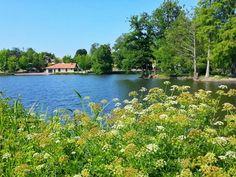 Lac de Christus à Saint Paul lès Dax.  #landes #saintpaullesdax #lacdechristus #pêche