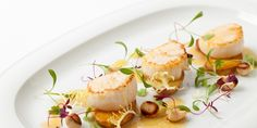 This is a spectacular scallop salad recipe by Adam Grey. Potatoes cooked in duck fat and toasted cobnuts rounding out pan-fried scallops for a delightful main dish.