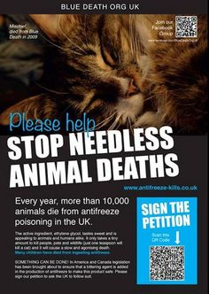 PLease keep sharing & raising awareness States In America, About Uk, Death, Join, People, Life, Animals, Raising, Public