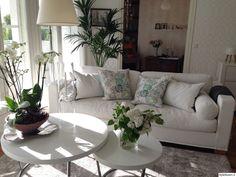 olohuone,vaaleat sävyt,sohvapöytä,sohva,valkoinen,kesä,sohvatyynyt,orkidea