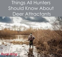 Get ready for the hunt. Tips all hunters should know about deer attractants. Bow Hunting Tips, Turkey Hunting Season, Hunting Rifles, Archery Hunting, Quail Hunting, Greatest Mysteries, Hunting Equipment, Hunters, Things To Come