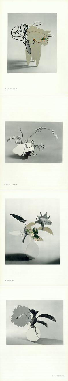 botanical, graphic, muted, vintage-ish, kinda strange collages by San Francisco based artist Leigh Wells
