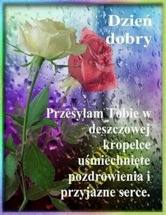German Language, Street Art, Day, Flowers, Plants, Inspiration, Rose, Polish Sayings, Morning Sayings