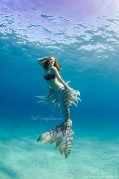 Seethroughsea Hawaiian mermaid experience.Finfolk productions silicone mermaid tail