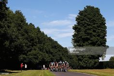 The peloton along Ranmore Common during the Prudential RideLondon Surrey Classic, a 200km route through London and Surrey, on August 2, 2015 in London, England. #RideLondon #rm_112