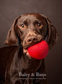 Play Ball?! by Julie Clegg, via 500px